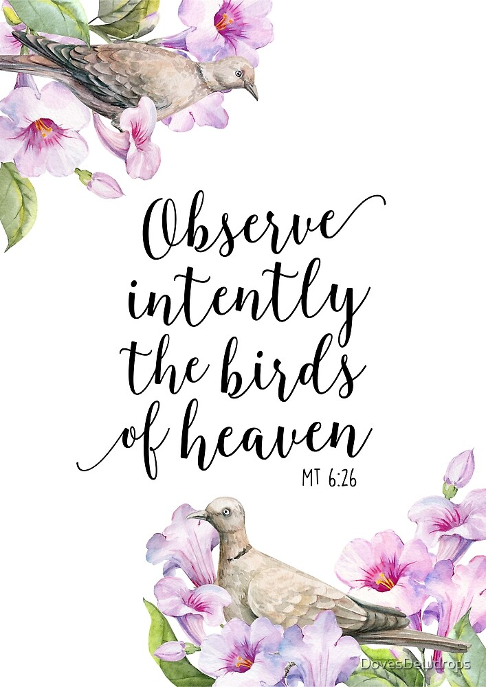 Matthew 6:26 - Birds of Heaven  by DovesDewdrops