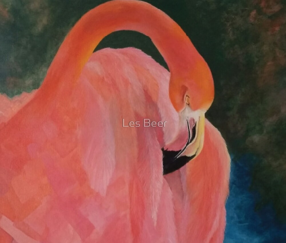 My My Flamingo by Les Beer