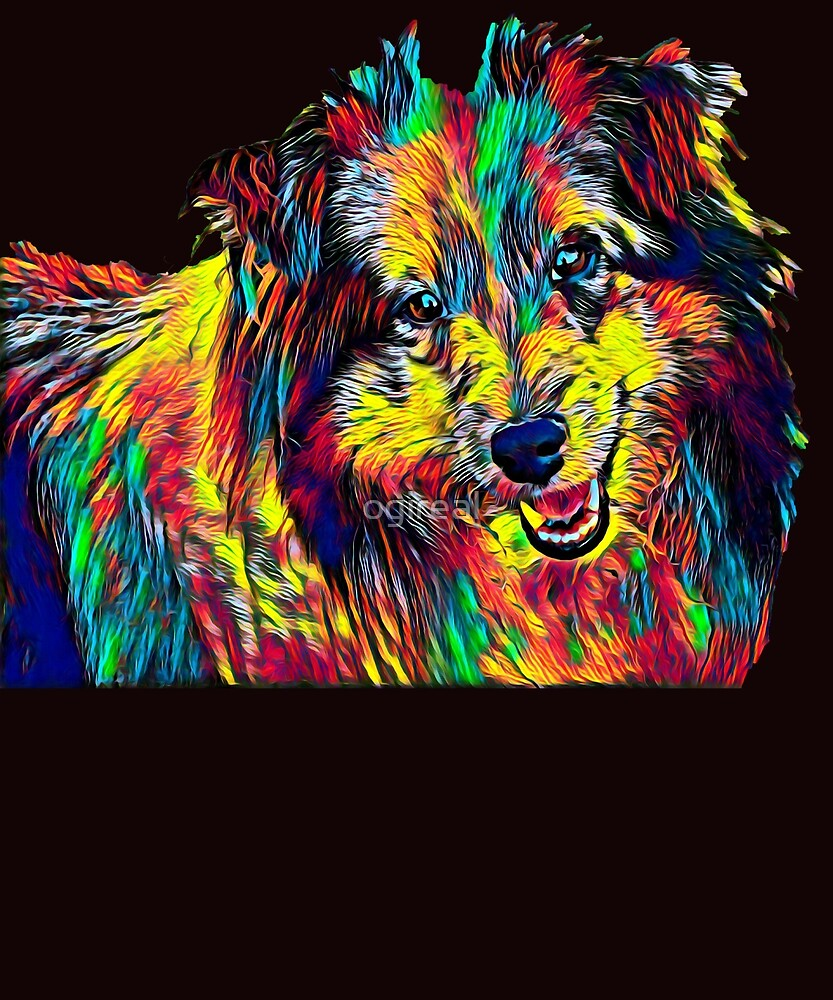 Schetland Sheepdog Dog Breed Pet Breed True Friend Colored Graphic Design by ogireal
