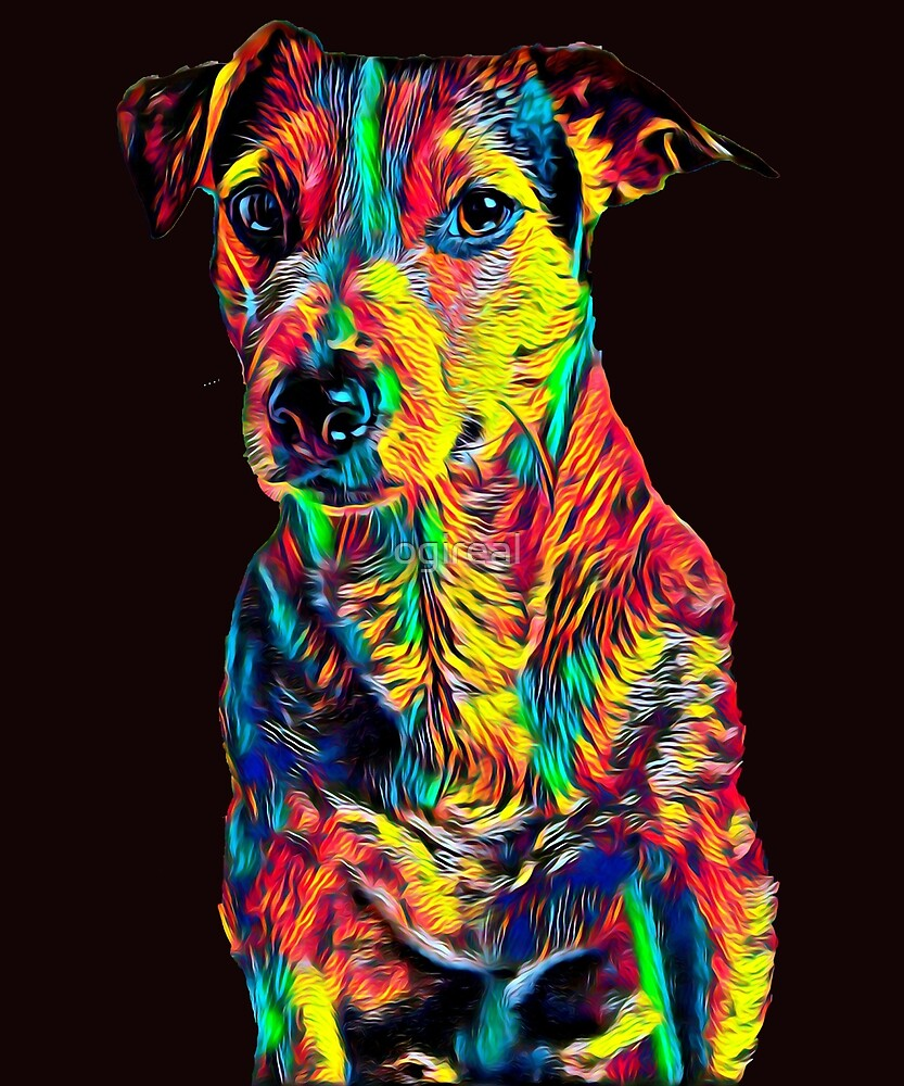 Jack Russel Terrier Dog Breed Pet Breed True Friend Colored Graphic Design by ogireal
