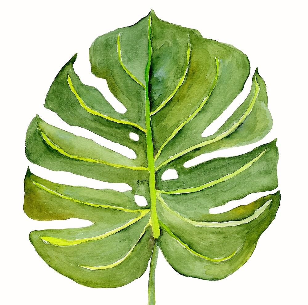 Monstera Leaf by MarinaSotiriou
