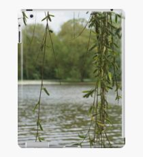 Through the willow iPad Case/Skin