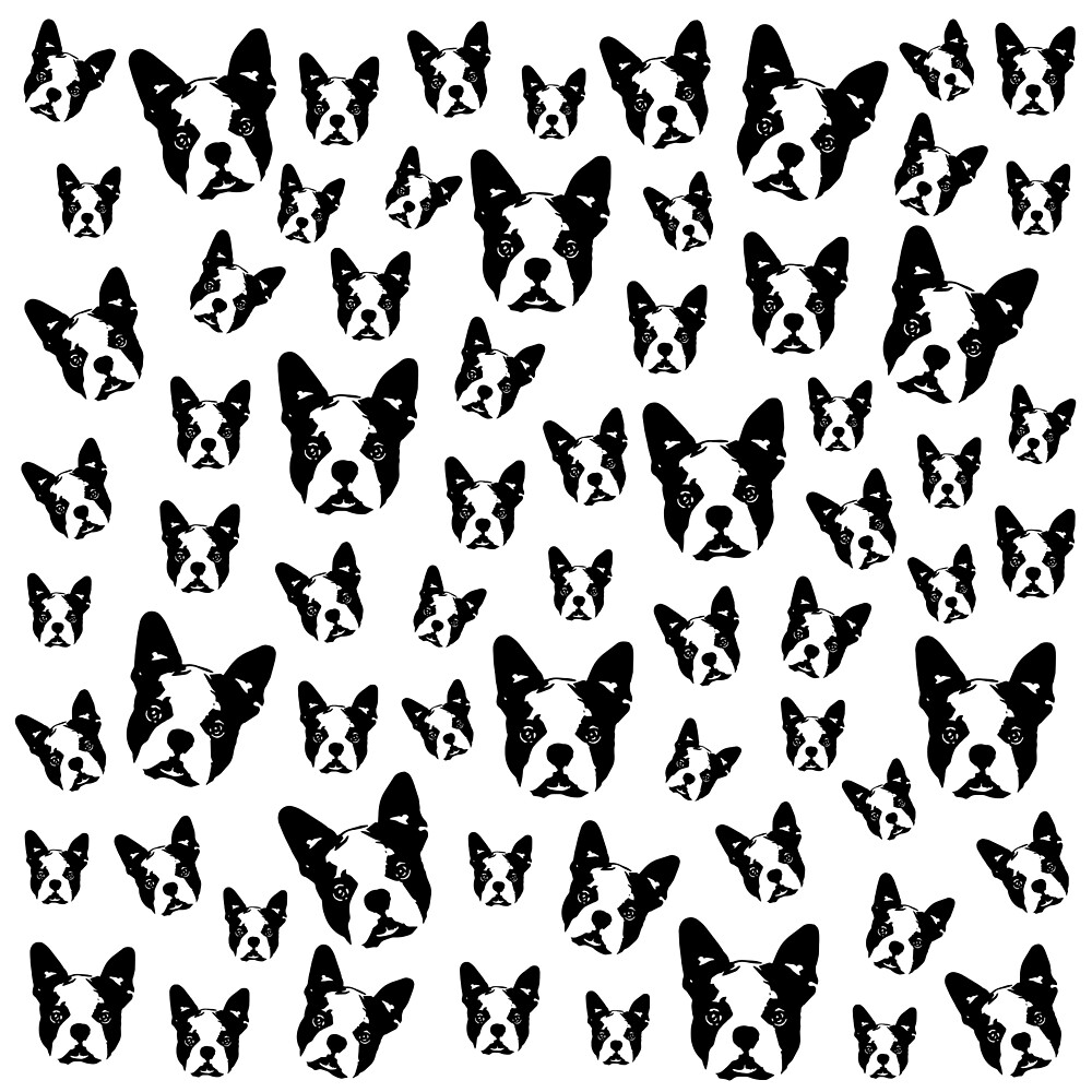 BOSTON TERRIER DOG by MONOFACES