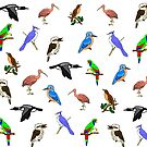 Birds by imphavok