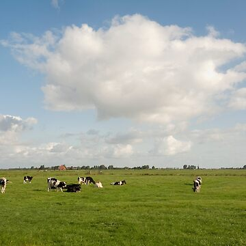 Grou/Grouw Friesland The Netherlands Typical pastoral scene.  by stuwdamdorp
