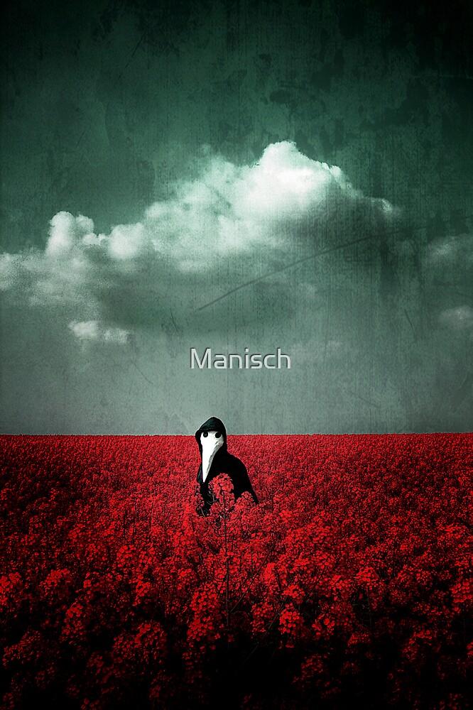 Catcher in the Rye by Manisch