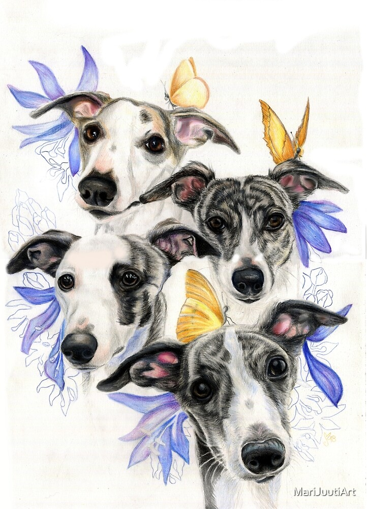 Whippets by MariJuutiArt