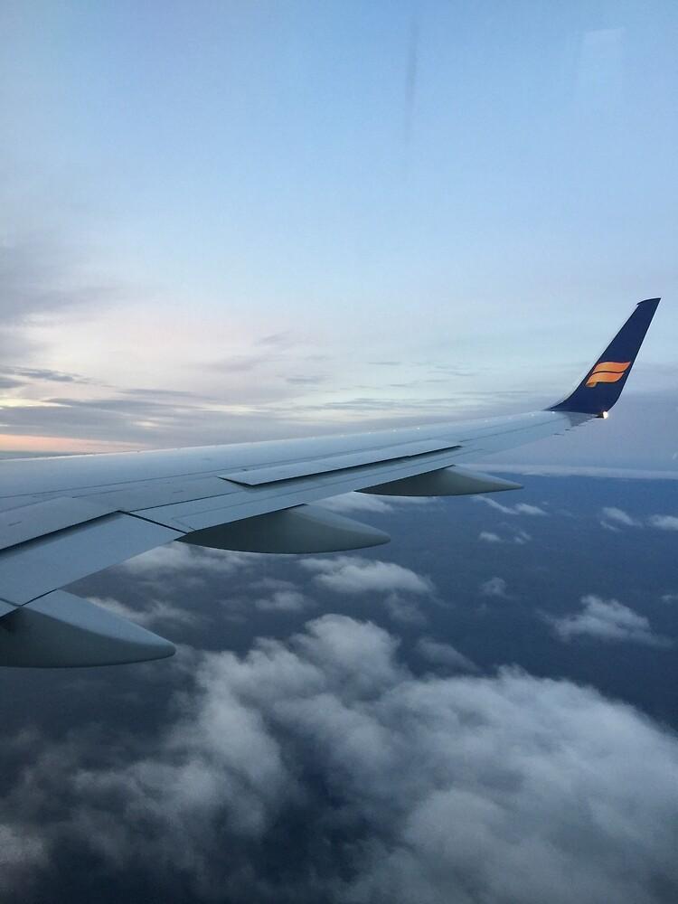 plane  by RahmAmin