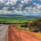 On the Road - Geraldton to Nanson, Western Australia by Elaine Teague