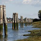 Pilings Along the Shore by Wolf Read