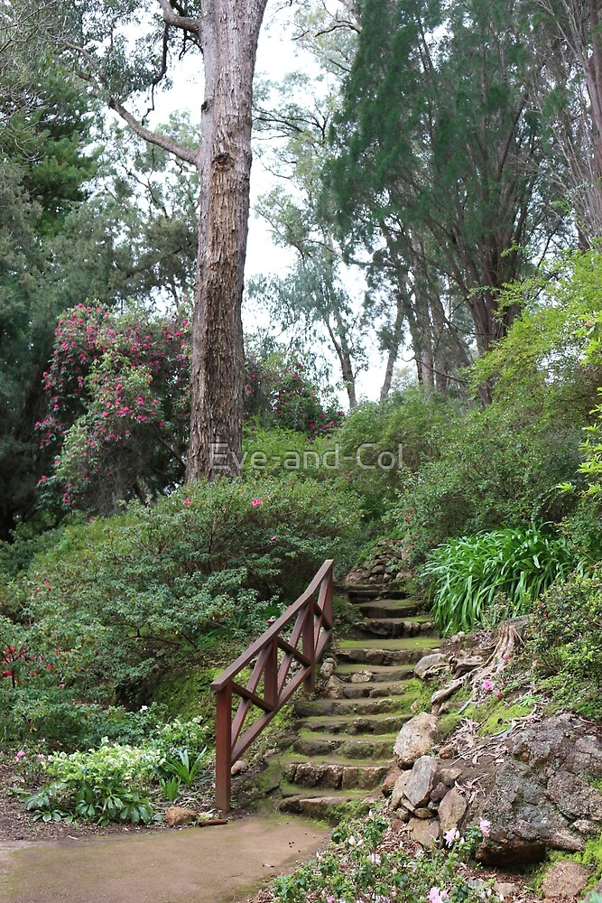 Garden stairway by Eve-and-Col