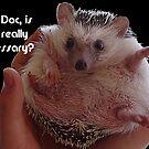 Hey Doc! © by jansnow