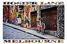 Hosier Lane (widescreen poster on white) by Ray Warren