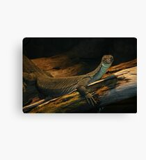 Regal Reptile Canvas Print