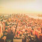 New York City - Skyline at Sunset by Vivienne Gucwa