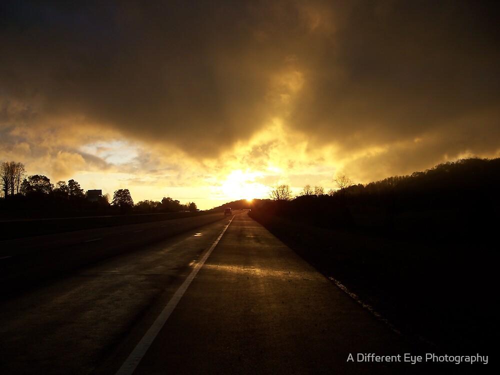 Sunward Bound I by Heather A McGhee