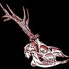 «calavera ciervo grabado» de Galbrin