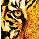 Tiger eyes by Leon Woods