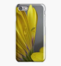 Quiet Place to Bathe iPhone Case/Skin