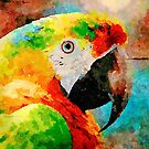 Colourful Parrot by Leon Woods