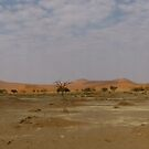 Sossusvlei panorama, Namibia by npdesign