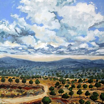 Cretan Olive Groves by Weakmeme