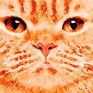 Ginger Cat by Leon Woods