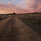 dirt road by Michael Gray
