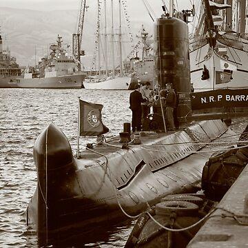 N R P Barracuda by gavila