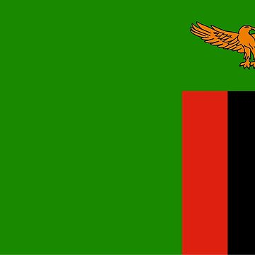 Flag of Zambia by Smaragdas