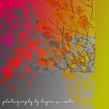 Fall Colors Unhinged No.03 by BryanSoCal