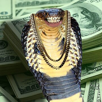 Cobra with Grillz by BerksGraphics