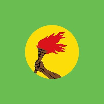 Flag of Zaire (1971 - 1997) by Smaragdas
