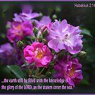 Habakkuk 2:14 by picketty