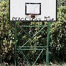 Love Basket by Nick Mattea
