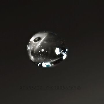 'Life Begins' by StarKatz