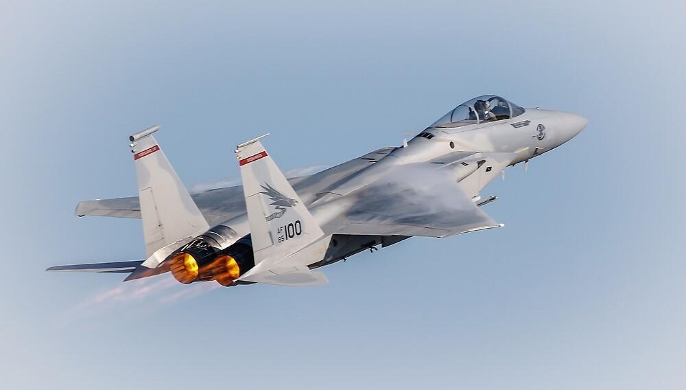 F18 Hornet by Athena Mckinzie