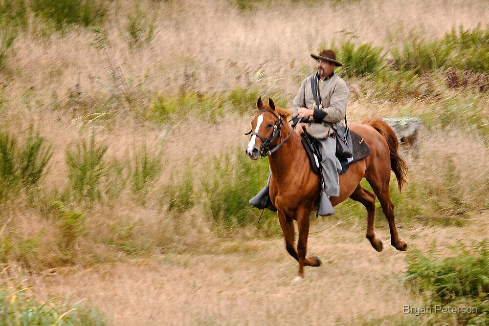 Confederate Cavalryman by Bryan Peterson