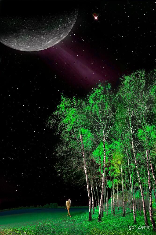 Under The Moon by Igor Zenin
