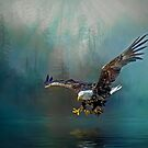 Eagle swooping for fish by Brian Tarr
