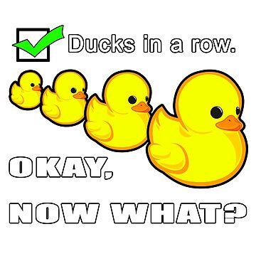 Got my ducks in a row. Now what? by ElmurFud