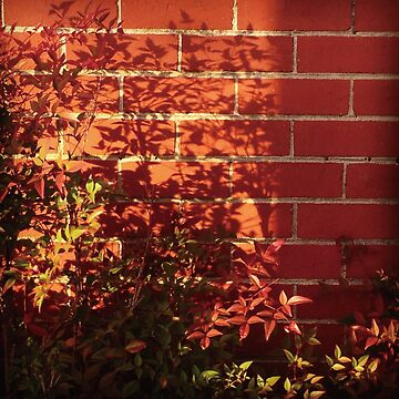red wall and plants by fhjr2002