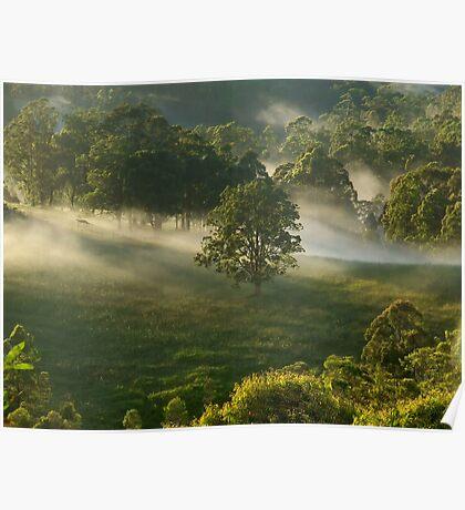"""Amongst the Mist"" Poster"