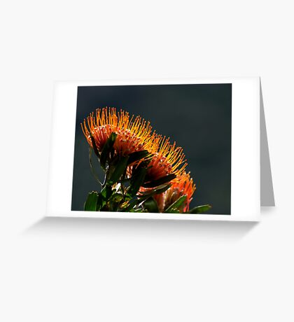 Ablaze II Greeting Card