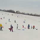 Sledging at Green hill, Romsey by Richard Paul