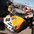 Michael Shank Racing by Jess Fleming