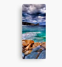 The Southern Ocean Canvas Print