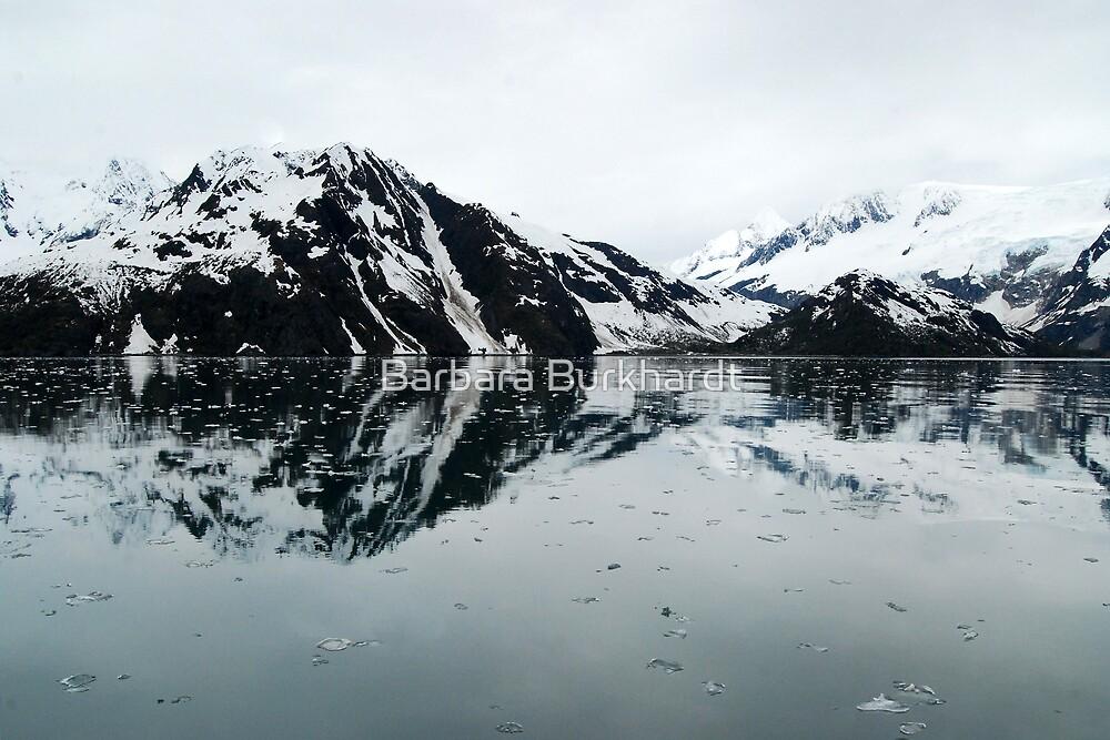 From a Dream ~ Kenai Fjord by Barbara Burkhardt