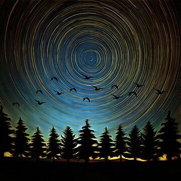 Star Trails by maryedenoa