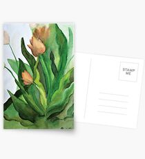 Watercolor Tulips  Postcards
